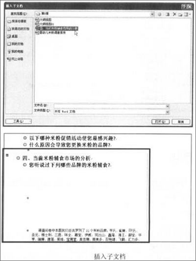 word 2007中如何插入一个子文档